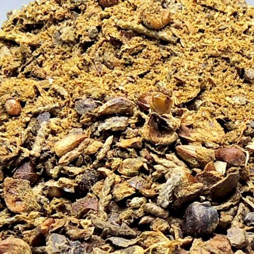 Satyamani Nilgiri Seeds Resin (50 gm)